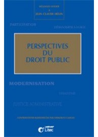 Perspectives du droit public